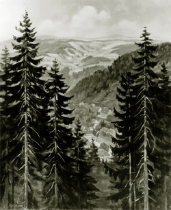 Triberg mit Nussbachtal - SW-Fotografie, Ölgemälde